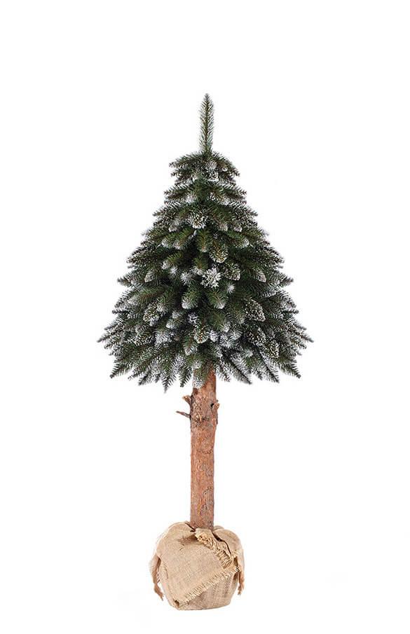 Árbol de Navidad Picea nevado en tronco