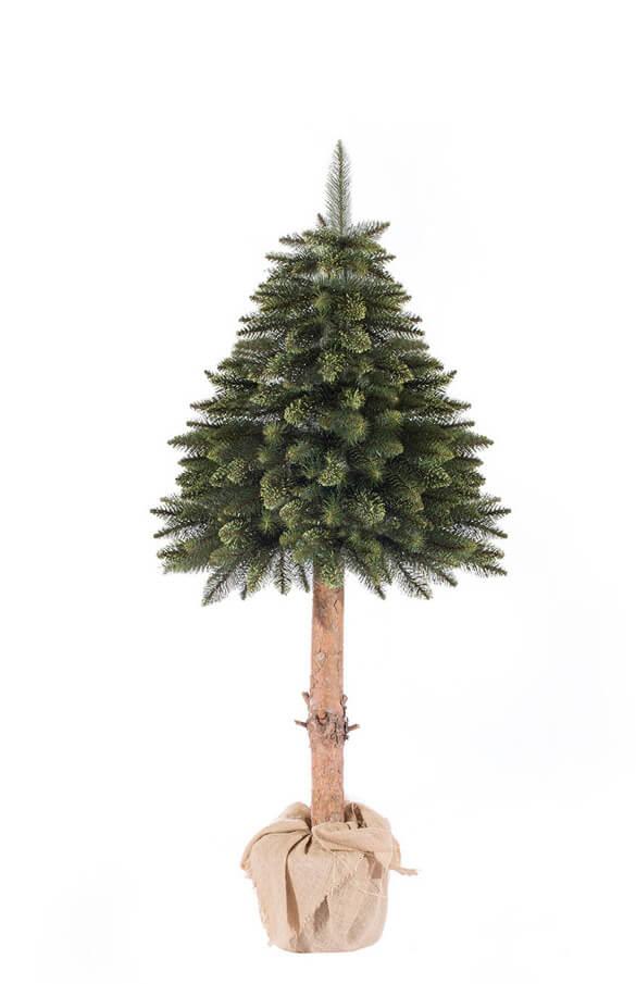 Árbol de Navidad Picea verde en tronco